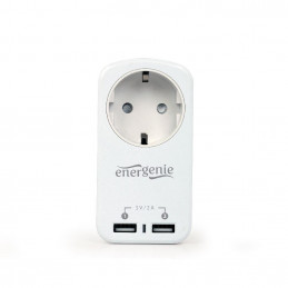 CHARGER USB WITH P/T AC...