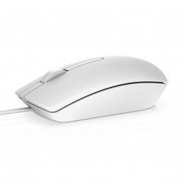 DELL MS116 mouse...